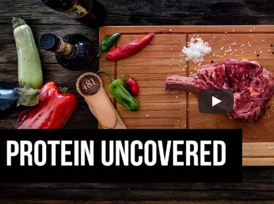 PROTEIN UNCOVERED